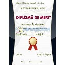 A_20 Diploma de merit
