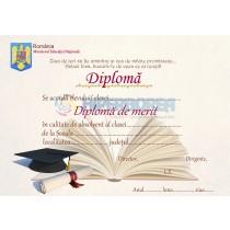 A_21 Diploma de merit