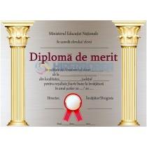 A_18 Diploma de merit