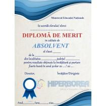 A_19 Diploma de merit