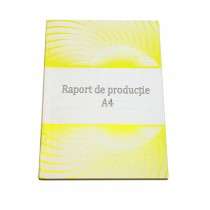 Raport de producție